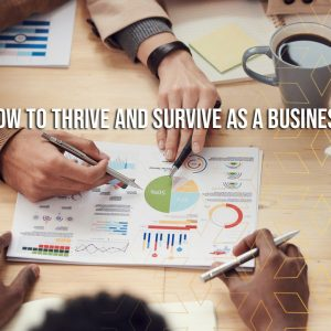 How To Thrive and Survive as a Business